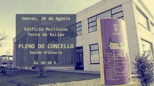 (2015 - 08 - 28) PLENO DO CONCELLO.Movie_Instantánea