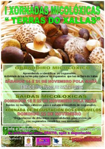 (2015 - 10 - 29) cartel xornadas micolóxicas (Small)