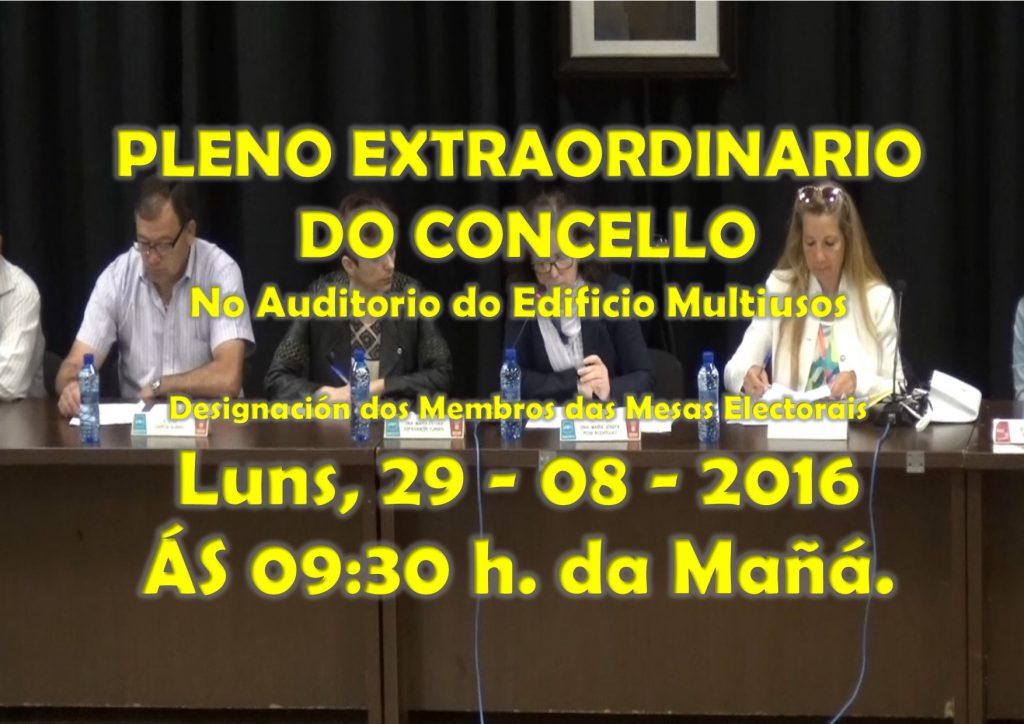 (2016 - 08 - 29) PLENO EXTRAORDINARIO